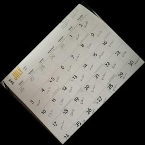 custody-calendar-800x800
