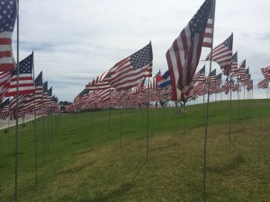 Flags 911